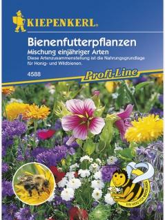 Bienenfutterpflanzen Mischung einjähriger Arten - Vorschau 1