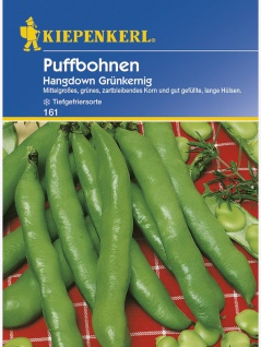 Puffbohnen Grosse Bohnen Hangdown grünkernig Portion
