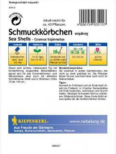 Cosmos bipinnatus Schmuckkörbchen Sea Shells Mischung - Vorschau 2