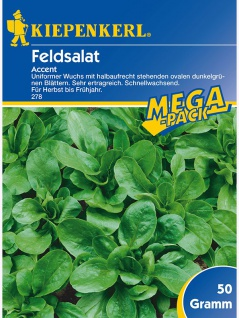 Feldsalat Accent 50gr , Grundpreis: 0.11 € pro 1 g
