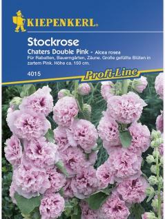 Alcea rosea Stockrosen Stockmalve Chaters Pink