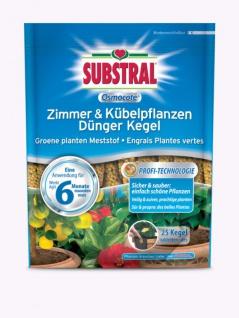 Substral Osmocote Zimmer & Kübelpflanzen Dünger Kegel