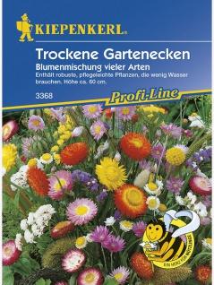 Blumenmischung Trockene Gartenecken einjährige Mischung vieler Arten