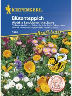 Blütenteppich Niedrige Landblumenmischung einjährig