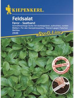 Feldsalat Favor tolerant Saatband 5mtr , Grundpreis: 0.56 € pro 1 m