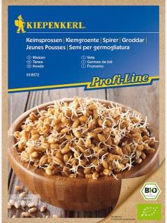 BIO Keimsprossen Weizen , Grundpreis: 0.04 € pro 1 g