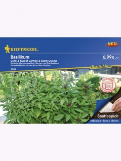Basilikum 2x Saatteppich (15cm x 150cm) Cino, Sweet Lemon, Siam Queen