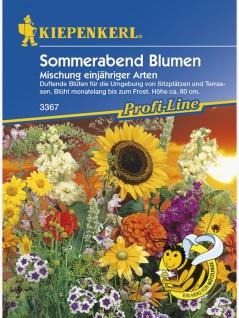 Blumenmischung Sommerabendblumen duftende Mischung einjähriger Arten