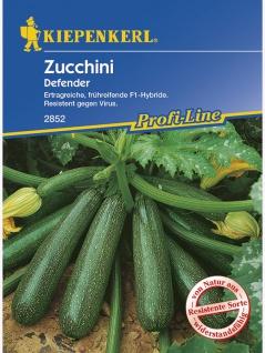 Zucchini Defender grün resistent
