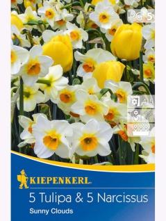 Tulpen & Narzissen Sunny Clouds, 10 Stück Blumenzwiebeln , Grundpreis: 0.40 € pro 1
