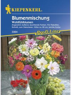 Blumenmischung Wohlfühlblumen einjährig Mischung