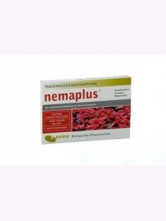 NemaPlus SF Nematoden zur Bekämpfung von Trauermücken 50 Mio für 100qm