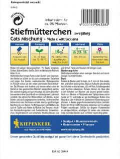Viola x wittrockiana Stiefmütterchen Cats Mischung - Vorschau 2
