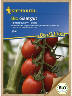 BIO Tomaten Bolstar Baloe