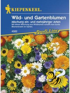 Wild- und Gartenblumen Mischung ein- und mehrjährig