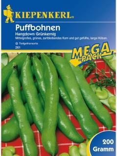 Puffbohnen Grosse Bohnen Hangdown grünkernig 200gr , Grundpreis: 12.95 € pro 1 kg