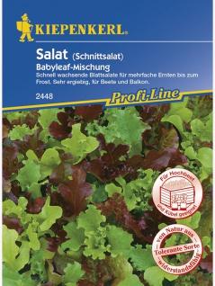 Salat (Schnittsalat) Babyleaf-Mischung - Vorschau 1