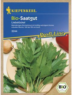 BIO Liebstöckel Maggikraut Biosaatgut