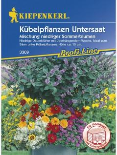 Blumenmischung Kübelpflanzenuntersaat einjährige niedrige Mischung
