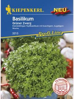Basilikum Fine Verde Grüner Zwerg