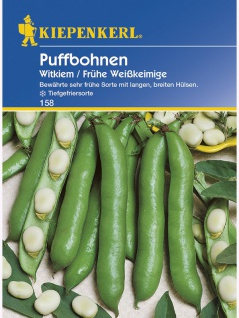 Puffbohnen Witkiem Grosse Bohnen Frühe Weisskeimige - Vorschau 1