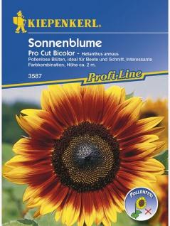 Sonnenblume Pro Cut Bicolor, F1