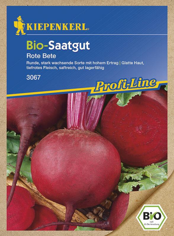 Bio Saatgut Kaufen : bio rote beete bio saatgut kaufen bei samenshop24 ~ A.2002-acura-tl-radio.info Haus und Dekorationen