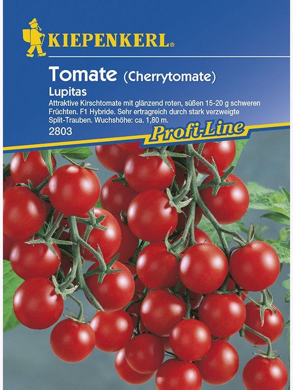 20 Pflanzen Kiepenkerl Saatgut Tomate