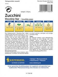 Zucchini Shooting Star - Vorschau 2