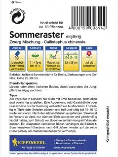 Callistephus Aster Zwerg-Aster Mischung - Vorschau 2