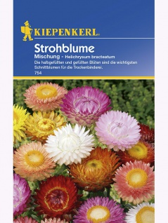 Helichrysum bracteatum Strohblume Mischung