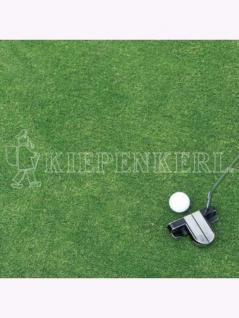 DSV-Rasensamen 4.1.7 Golfrasen Grün Nachsaat 10kg , Grundpreis: 26.69 € pro 1 kg