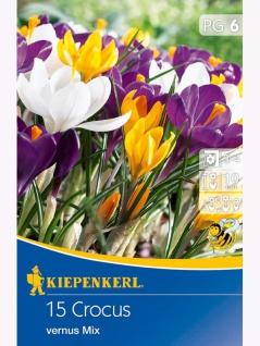 Crocus Großblumiger Mix, 15 Stück Blumenzwiebeln , Grundpreis: 0.31 € pro 1