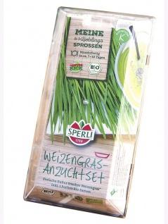 BIO Keimsprossen Weizengras Starter-Set
