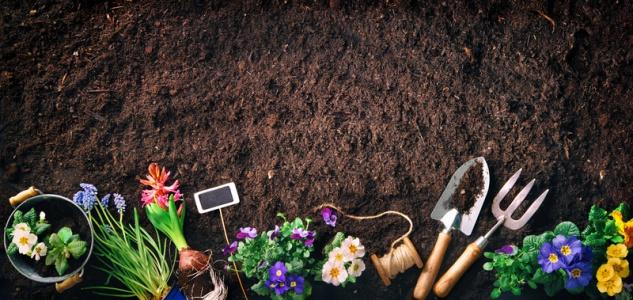Samenshop24® 50L Blumenerde in echter Gärtnerqualität mit hohem Weißtorfanteil, Ton+Dünger, Profi-Erde , Grundpreis: 0.12 € pro 1 l
