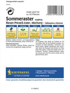 Callistephus Sommeraster Riesen-Prinzess Mischung - Vorschau 2