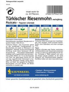 Papaver orientale Türkischer Riesenmohn Pizzicato niedrige Mischung - Vorschau 2