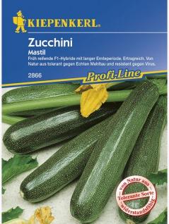 Zucchini Mastil grün resistent