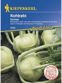 Kohlrabi Konmar weiss