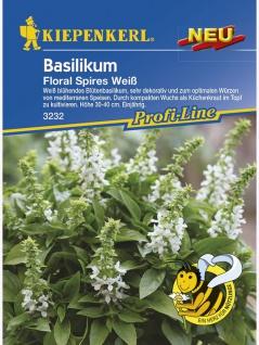 Basilikum Floral Spires Weiß