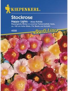 Alcea ficifolia Stockrosen Happy Lights Mischung
