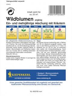 Wildblumenmischung mit Kräutern ein- und mehrjährige Mischung MEGA-PACK - Vorschau 2