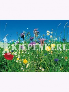 Reine Wildblumen und Kräutermischung 100gr , Grundpreis: 199.50 € pro 1 kg