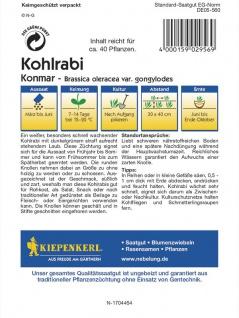 Kohlrabi Konmar weiss - Vorschau 2