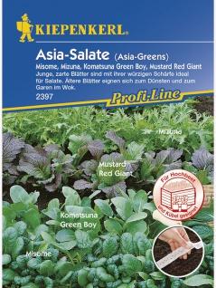 Asia-Salate-Mischung Saatband 10mtr , Grundpreis: 0.40 € pro 1 m