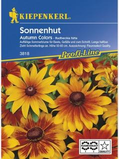 Rudbeckia hirta Sonnenhut Autumn Colours