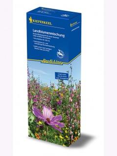 Landblumenmischung ein- und mehrjährige Mischung - Vorschau 2