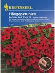 Petunia grandiflora Hängepetunien Fortunia Wave Red rot Pillensaat