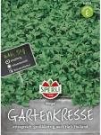 Gartenkresse Mega großblättrig Maxipack 50g , Grundpreis: 0.04 € pro 1 g