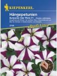 Petunia grandiflora Hängepetunien Burgundy Star Wave F1 burgunderrot mit weissem Stern Pillensaat